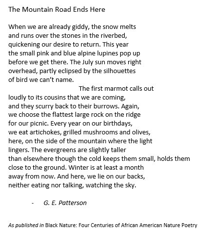 The Mountain Road Ends Here, G.E. Patterson